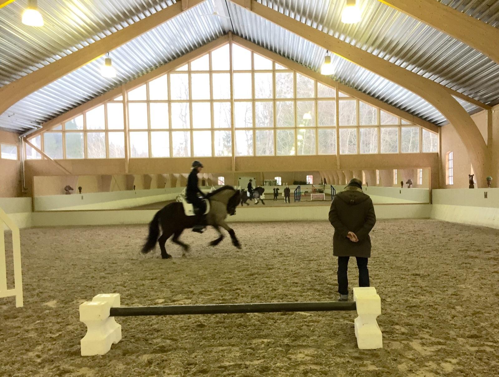 stötvågsbehandling häst