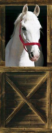 häst tapet rusta