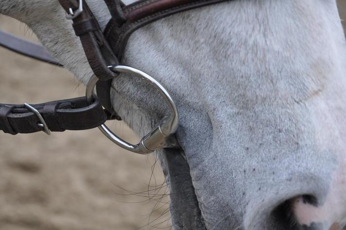 bra bett till känslig häst