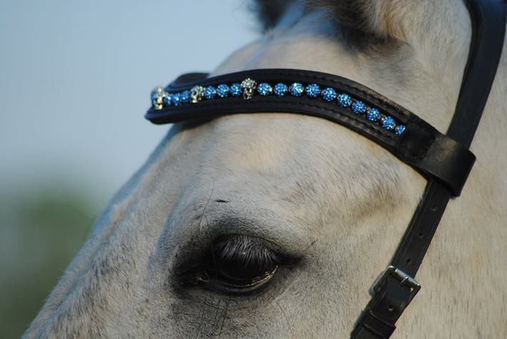snygga pannband häst