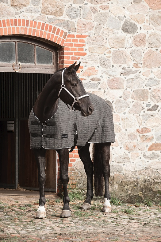 cooler täcke häst