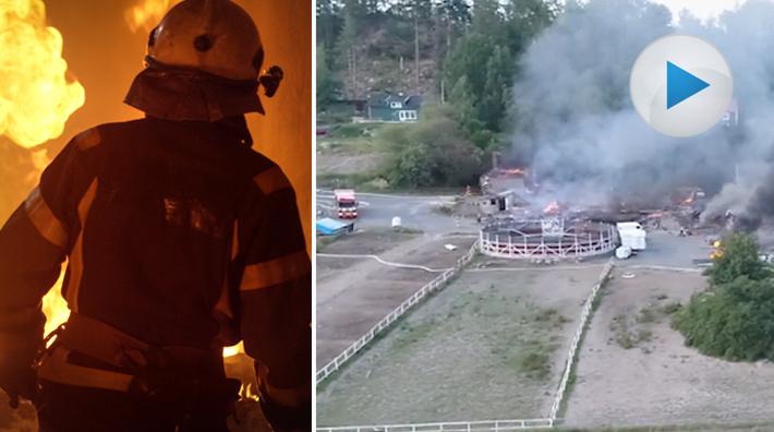 Hastar raddades ur anlagd brand