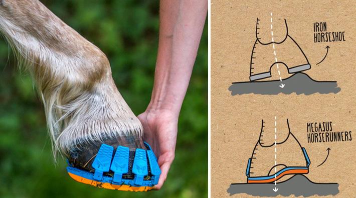 Skor Hästen storlek 6