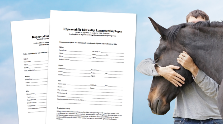 enkelt fodervärdsavtal häst