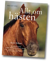 allt om hästen