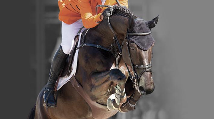satsade på fel häst